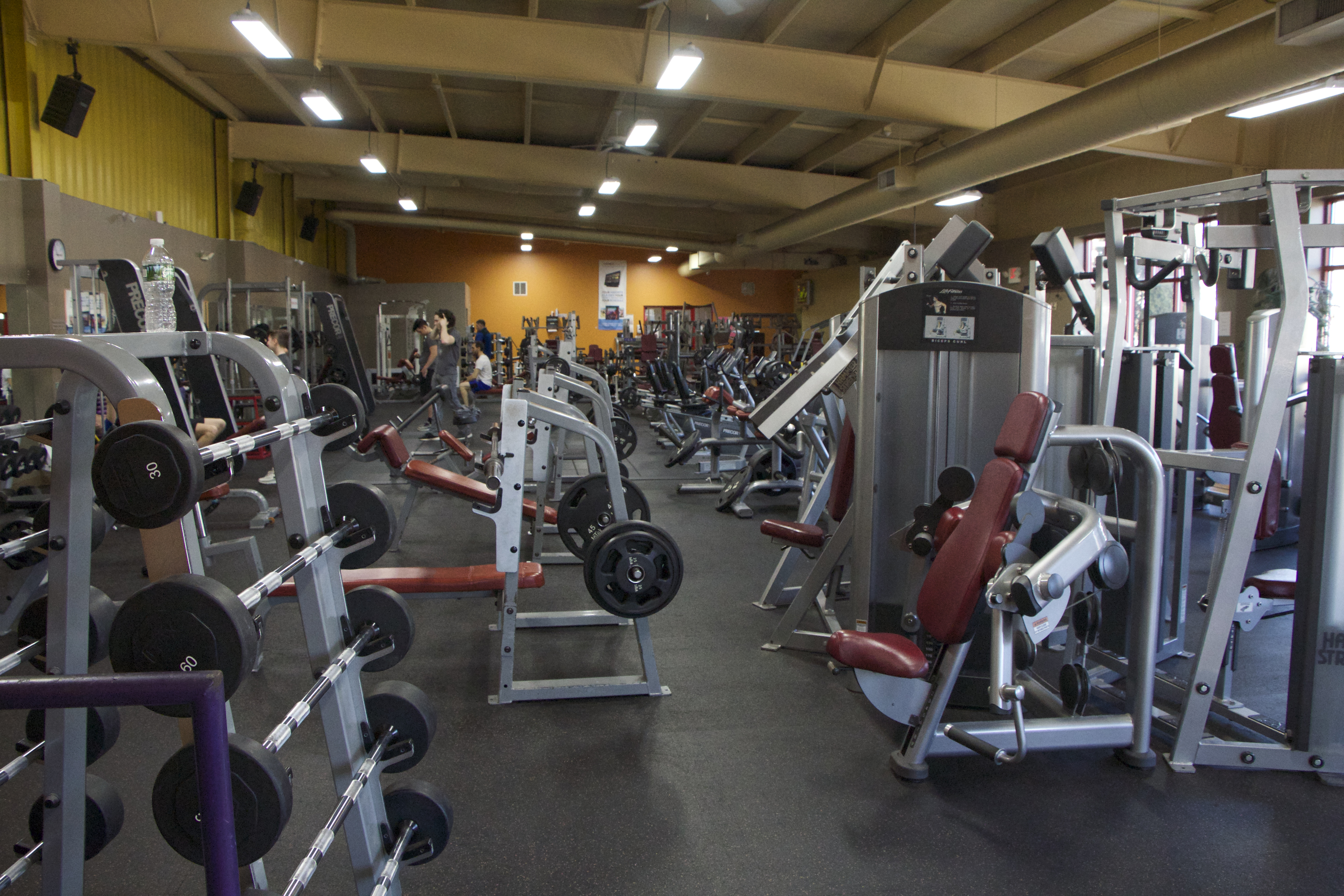 Fitness Center Weight Equipment